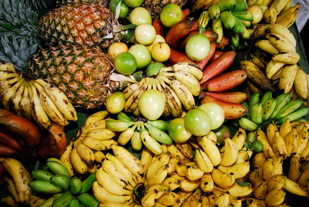 Local Fruits_Raymond sahuquet.jpg