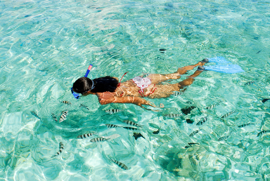Image result for snorkeling in seychelles images
