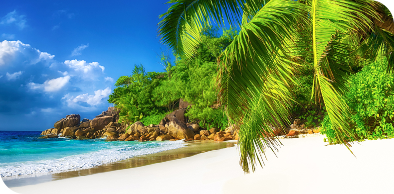 Travel to Seychelles with air seychelles