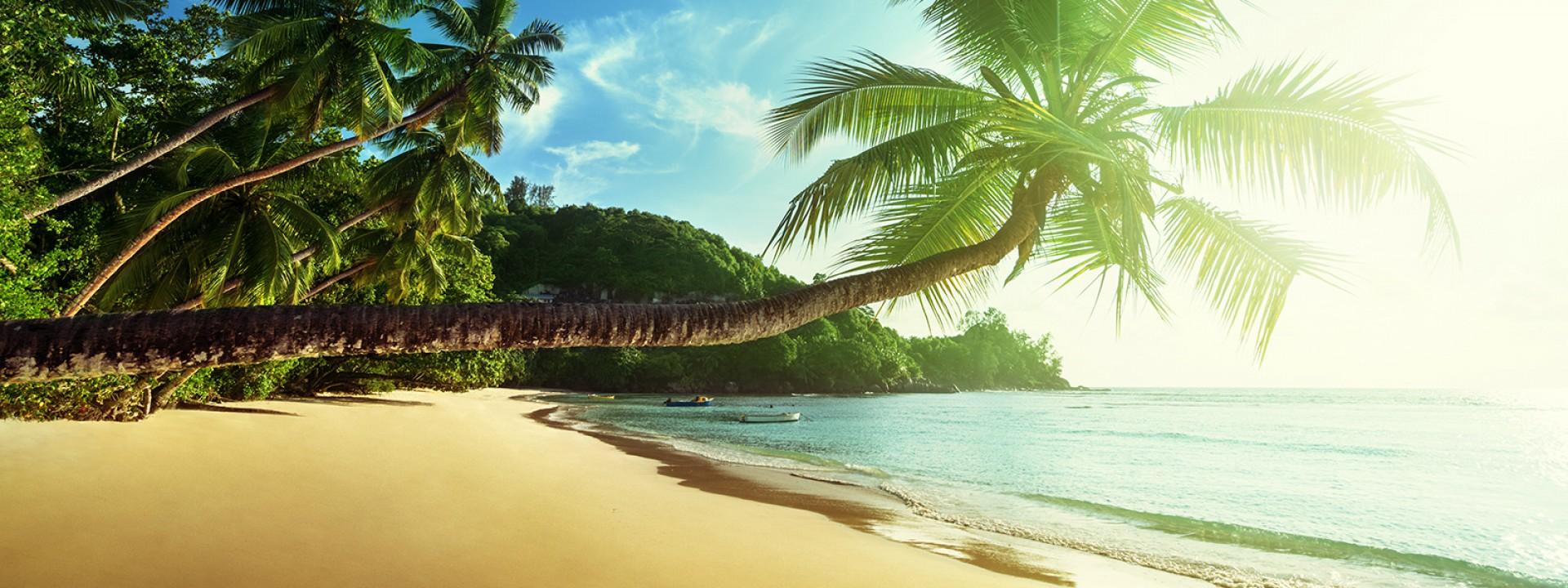 Voli per Seychelles